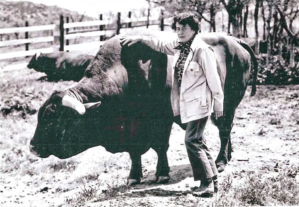 Photo of Tweet Kimball and her Santa Gertrudis cattle