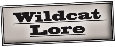 Graphic Wildcat Lore logo