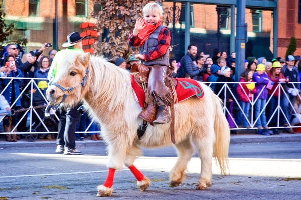 Photo little boy on pony in 2020 National Western Parade