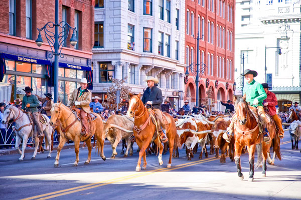 Photo National Western Stock Show2020 parade