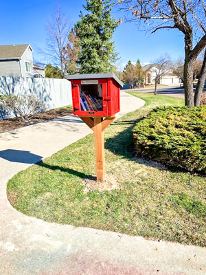 Photo of Little Free Library stocked with books