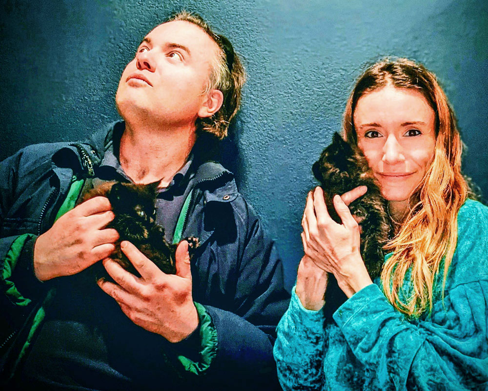 Photo of Peter and Diane Demis are new parents to a family of felines