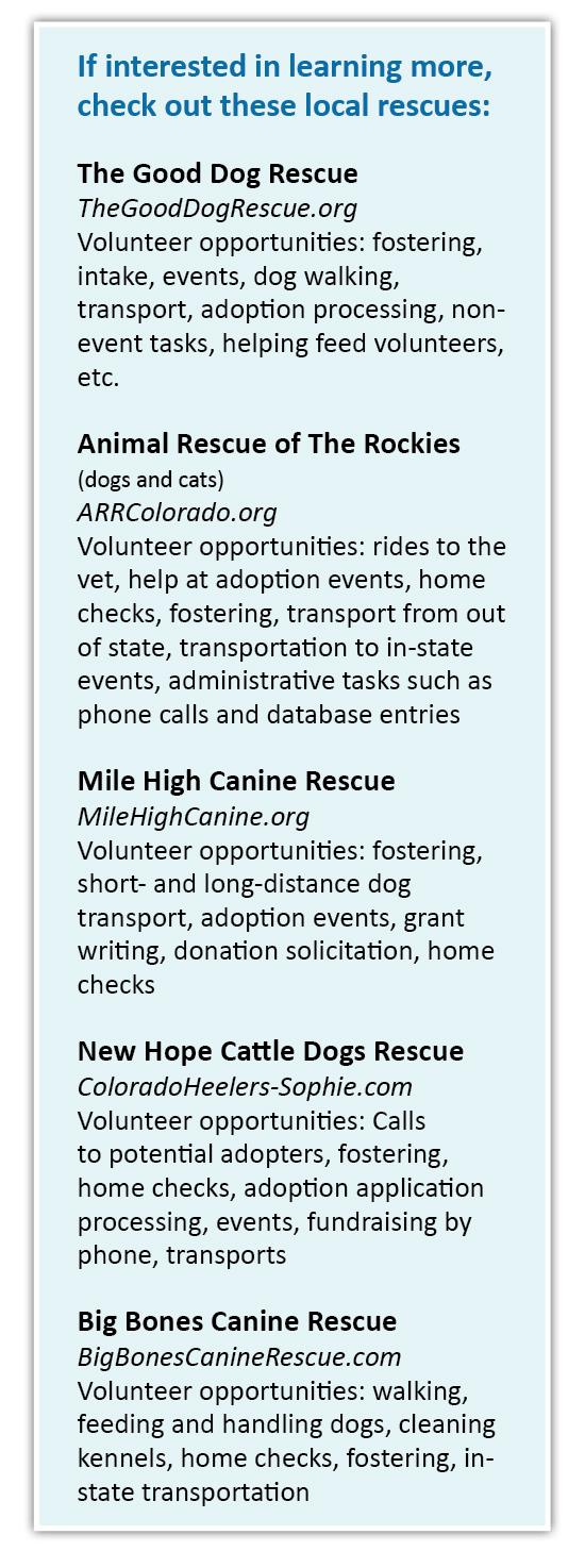 Pet Rescue sources