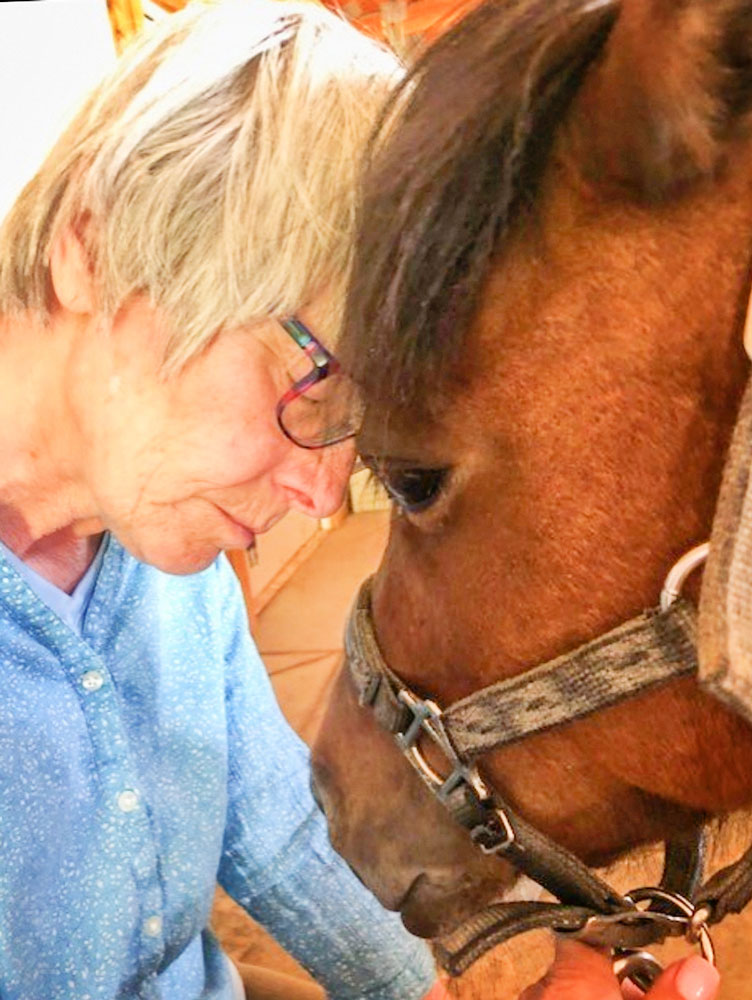 Photo of Equine Partnership Program uses equine-assisted psychotherapy