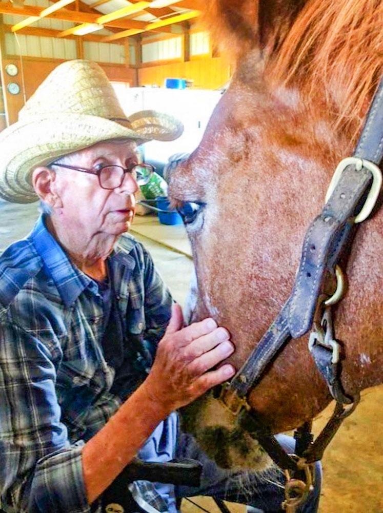Photo of gentleman taking part in Equine Partnership Program
