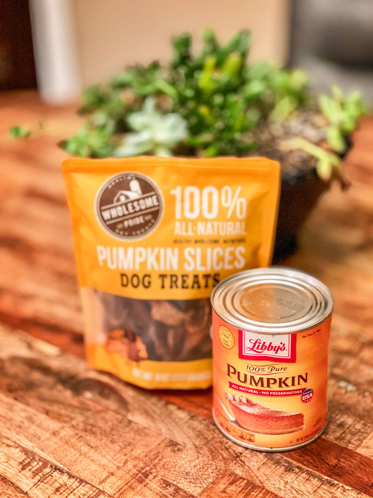 Photo of pumpkin treats for dogs and cats